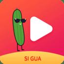 丝瓜视频在线观看app