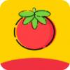 番茄影视免费追剧软件