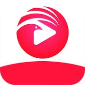 小鸟影院tv版