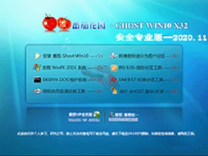 番茄花园 GHOST WIN10 32位安全专业版 v2020.12