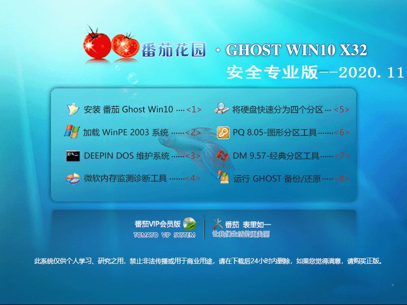 番茄花园 GHOST WIN10 32位安全专业版