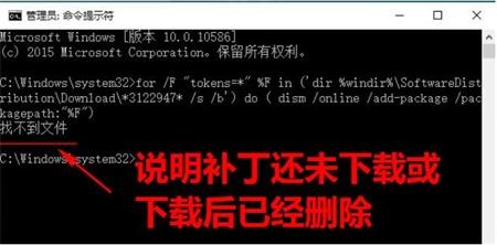 Ghost Win10 64位 专业版 20H1 正版镜像资源包